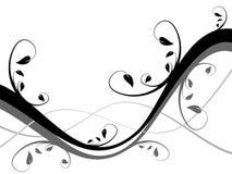 blanc floral de conception noire Images libres de droits