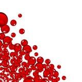 Blanc moderne de conception de page de bubles rouges Images stock