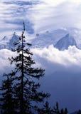 blanc mont Στοκ Εικόνα