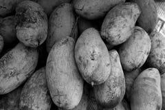 Blanc noir sain cru vert de fruit tropical de mangue Photo stock