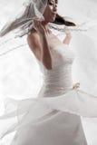 Blanc nuptiale Photo libre de droits