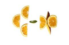 blanc orange de vecteur de parts d'illustration d'agrumes de fond Photos libres de droits