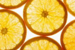 blanc orange de vecteur de parts d'illustration d'agrumes de fond Images stock