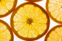 blanc orange de vecteur de parts d'illustration d'agrumes de fond Photos stock