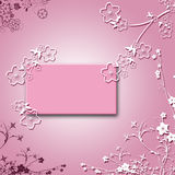Blanc rose Photos libres de droits