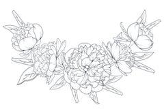 Blanc rose de noir de guirlande de feuillage de laurier de pivoine illustration libre de droits