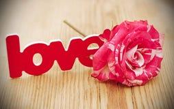 blanc rouge s'est levé et a dispersé des pétales de fleur et l'amour de mot dessus Photos stock
