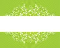 blanc vert de fond Photos libres de droits