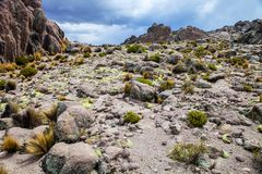 BLANCA αλυκών Υ Aguada Reserva Nacional βουνών, Περού Στοκ εικόνα με δικαίωμα ελεύθερης χρήσης