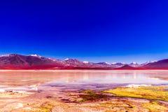 Blanca coloré de Laguna dans l'Altiplano de la Bolivie Photographie stock libre de droits