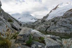 Blanca de Cordillera Fotografía de archivo
