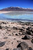 Blanca de Laguna en Bolivia Imagen de archivo libre de regalías