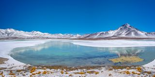 Blanca de Laguna, province de Lipez de lessive, Potosi Bolivie photo stock