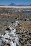 Blanca de las salinas de Laguna Fotografía de archivo