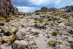 BLANCA delle saline y Aguada di Reserva Nacional della montagna, Perù immagine stock libera da diritti