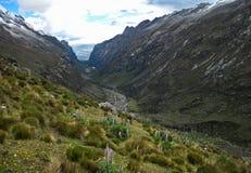 Blanca för Cojup dal, Cordillera, Peru Arkivfoto