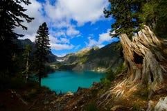 blanca-lake Arkivbild