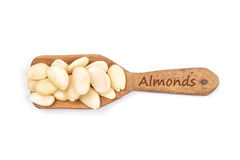 Blanched almonds on shovel Royalty Free Stock Images