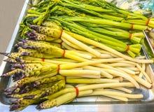 Blanched Siam Tulipanowy Cucuma Sparganifolia Choy i Chiński Kwiatonośny Kapuściany bagno, Tajlandzki naczynie, normalnie jedzący zdjęcia stock