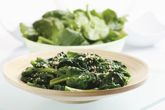 Blanched spinach leaves on plate Stock Image