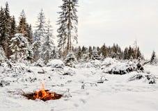 Blancheur et incendie. L'hiver Photos stock