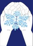 Blanching snowflake Stock Photos