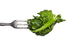 Blanching spinach leaf on fork,isolated Stock Photography