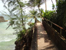 Blanchisseuse. Beautiful Bridge by the Beach in Trinidad Royalty Free Stock Photography