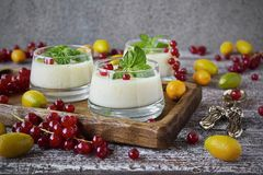 Blancmange curd in a glass. And fresh red currant, kumquat and mint stock photo
