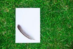 A4 blanco Fotografía de archivo libre de regalías