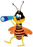 Blanco de la abeja Fotografía de archivo libre de regalías
