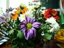 Blanco de la flor Imagen de archivo