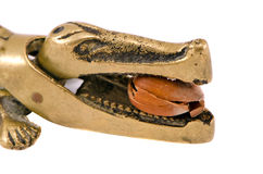 Blanco del agolpamiento de la tuerca de la avellana grande de la herramienta del cocodrilo del oro del primer Foto de archivo