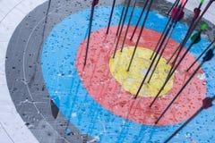 Blanco del tiro al arco con las flechas en ella Diversa bola 3d Fotografía de archivo