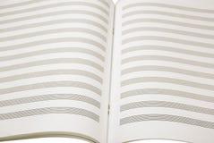 De muziek van het blad Stock Afbeeldingen