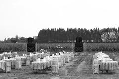 Blanco rural tailandés tradicional del negro del evento del banquete Fotografía de archivo libre de regalías