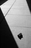 Blanco y negro Fotos de archivo