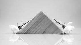 Blanco y negro, aún composición de la vida con los pedazos geométricos de madera con las rosas blancas Fotos de archivo libres de regalías