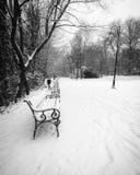 Blanco y negro de banco en un parque Fotografía de archivo libre de regalías