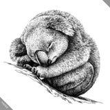 Blanco y negro grabe el ejemplo aislado del vector de la koala Imagenes de archivo