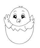 Blanco y negro - pequeño polluelo Imagen de archivo libre de regalías