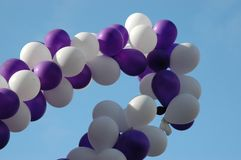 Blanco y púrpura Imágenes de archivo libres de regalías