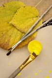 8 bland annat leaves för höstbakgrundseps mapp Royaltyfria Foton