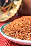 blanda mexikanska kryddor Royaltyfri Fotografi