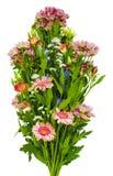 Blandad bukett av blommor på en vit bakgrund Royaltyfria Bilder