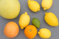 Blandad citrusfrukt Arkivbilder
