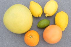 Blandad citrusfrukt Royaltyfri Fotografi