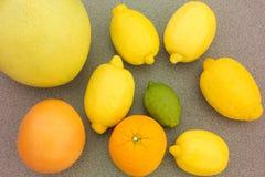 Blandad citrusfrukt Arkivfoton