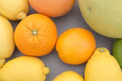 Blandad citrusfrukt Royaltyfri Bild