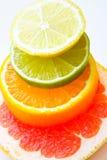 blandad citrusfrukt Royaltyfria Foton